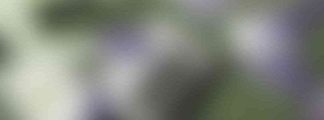 http://charlys-musicshop.com/wp-content/uploads/2013/03/relay_slide_3_v01-1136x420.jpg